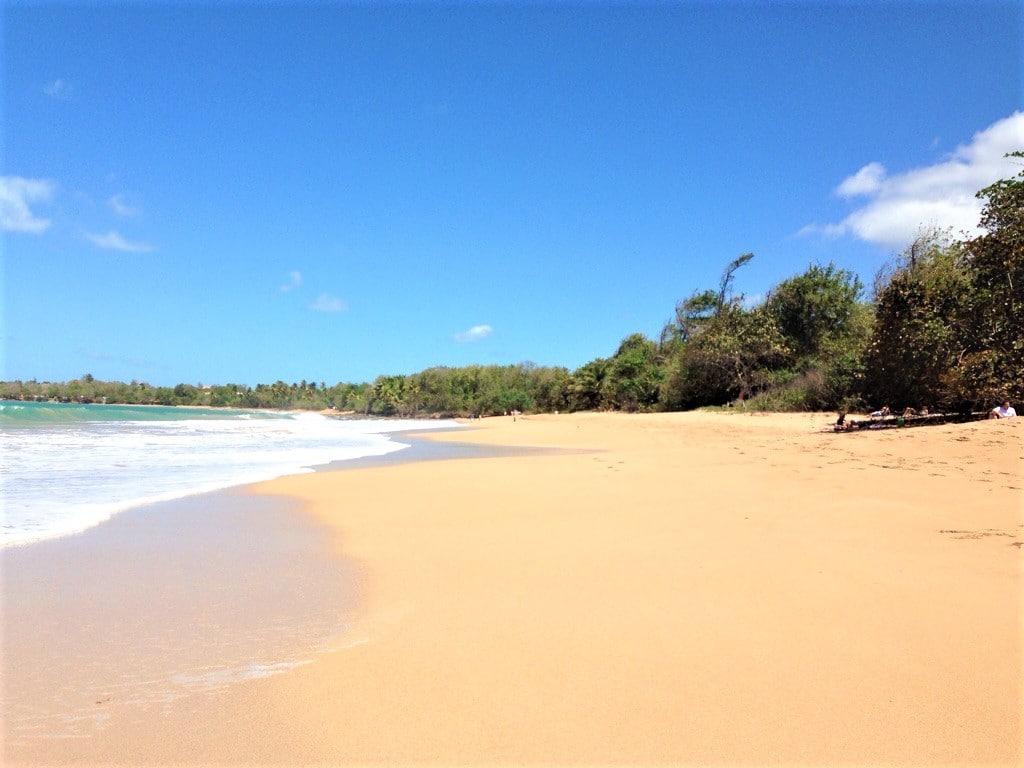 les plages paradisiaques de la basse terre