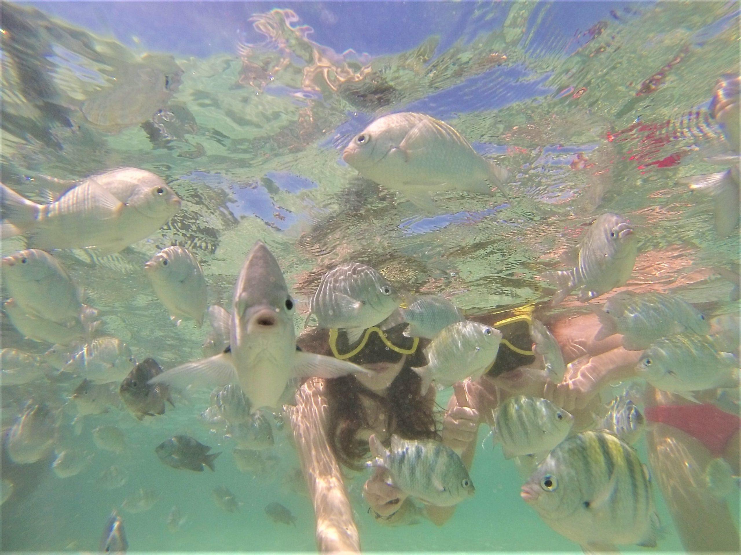 Selfie avec les poissons blog kikimagtravel