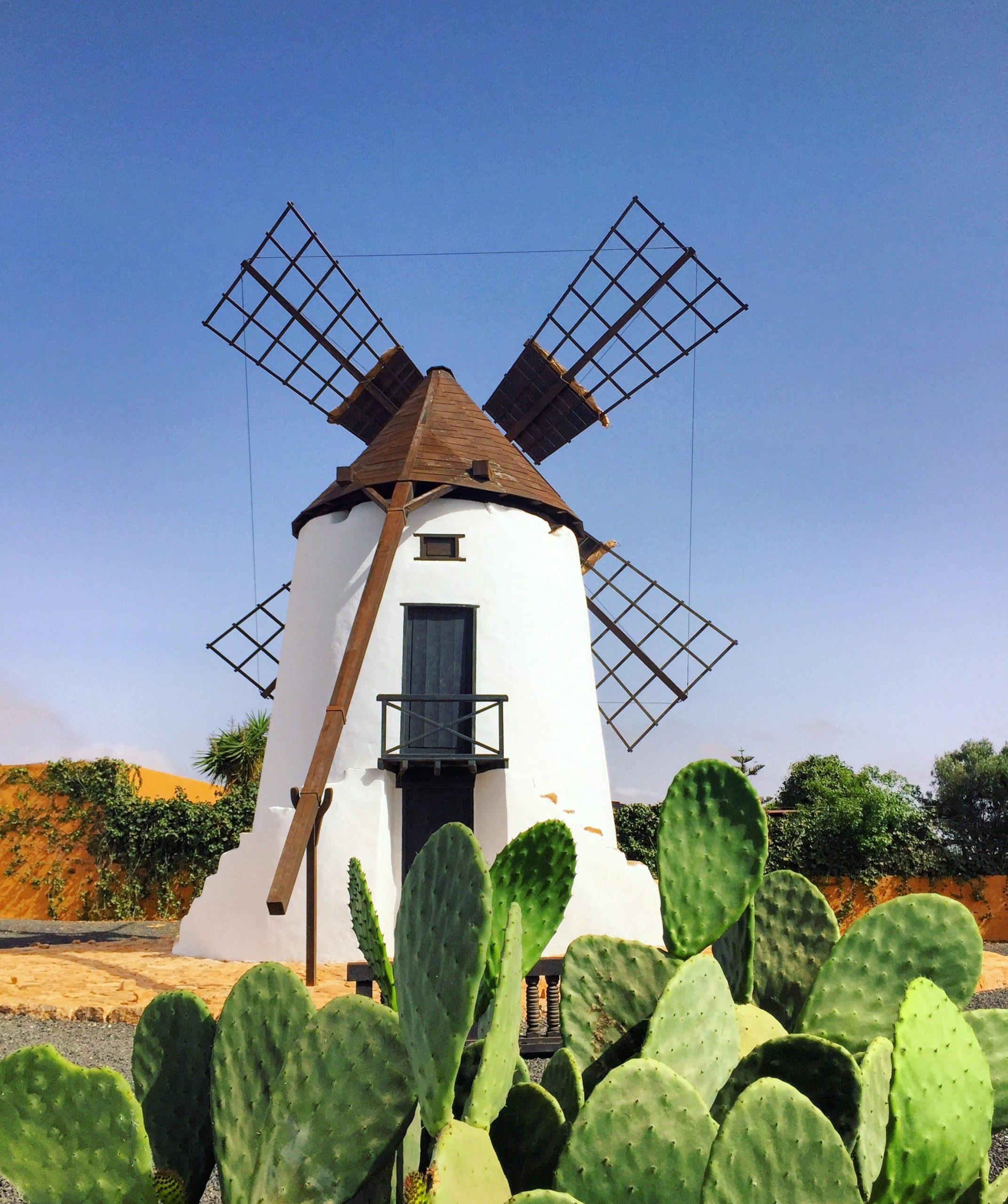 les moulins d'antigua