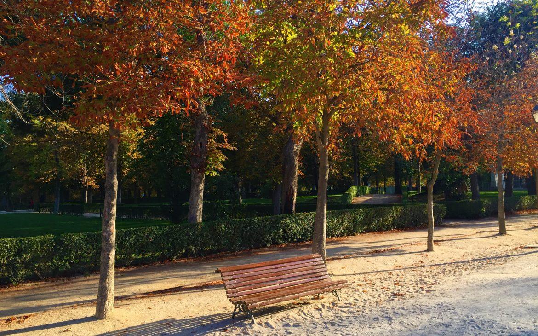 Madrid parc el retiro