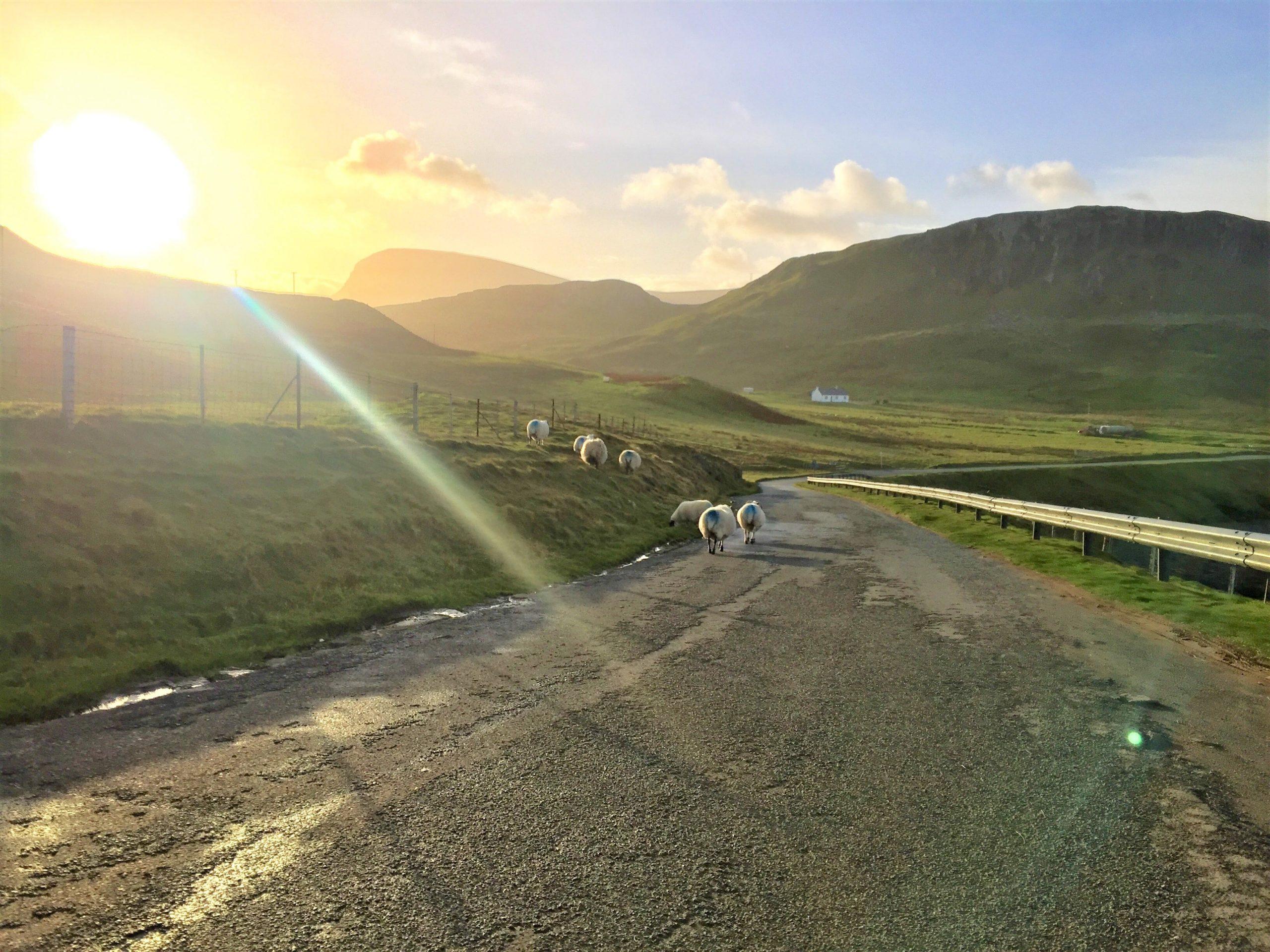 Road trip en Écosse - île de Skye