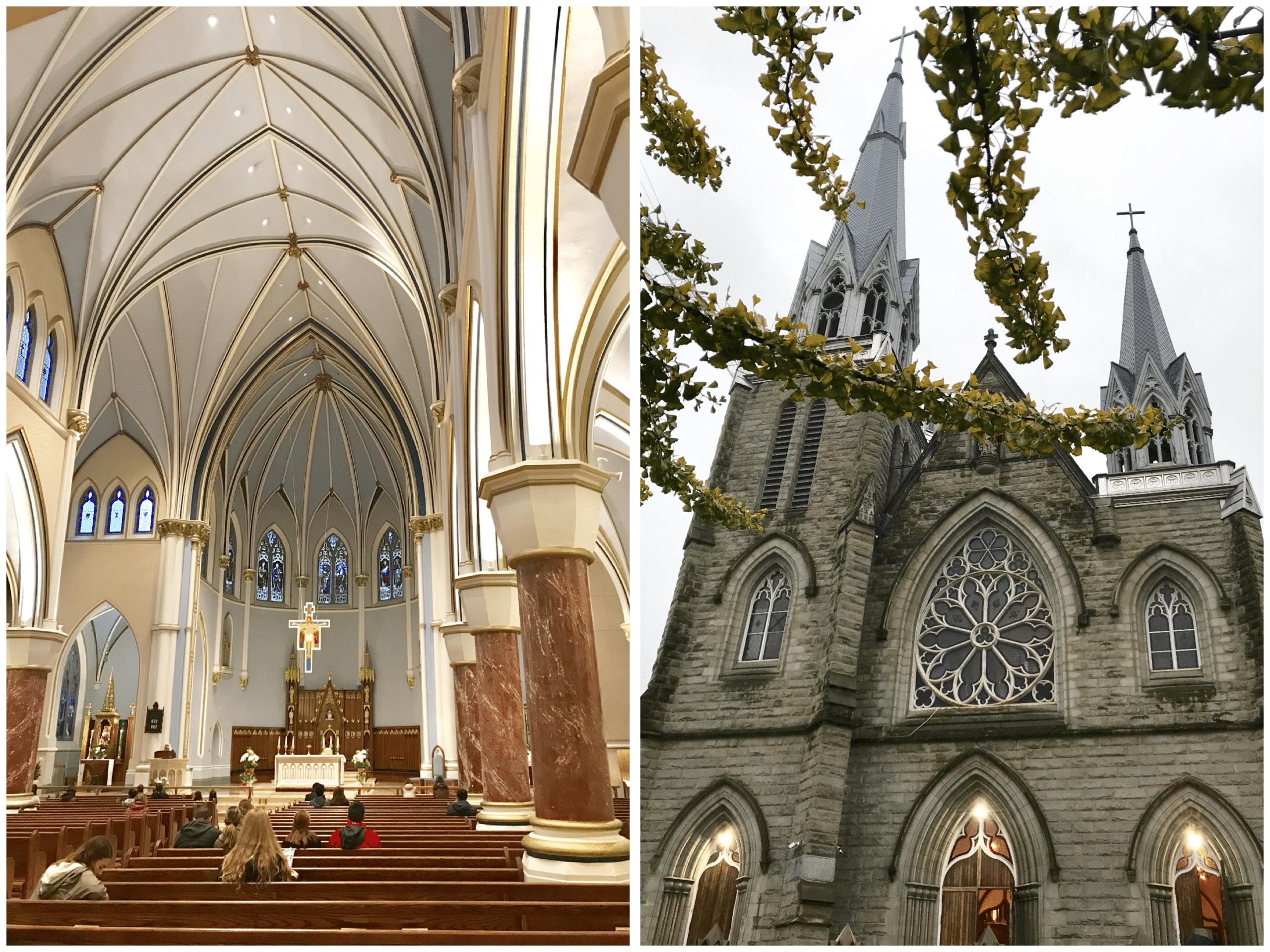 la Cathédrale du Saint-Rosaire( Holy Rosary Cathedral )