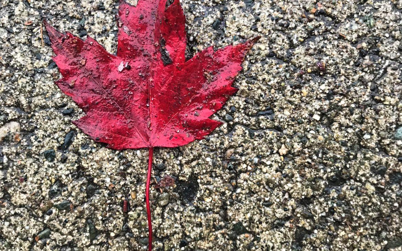 un automne à vancouver