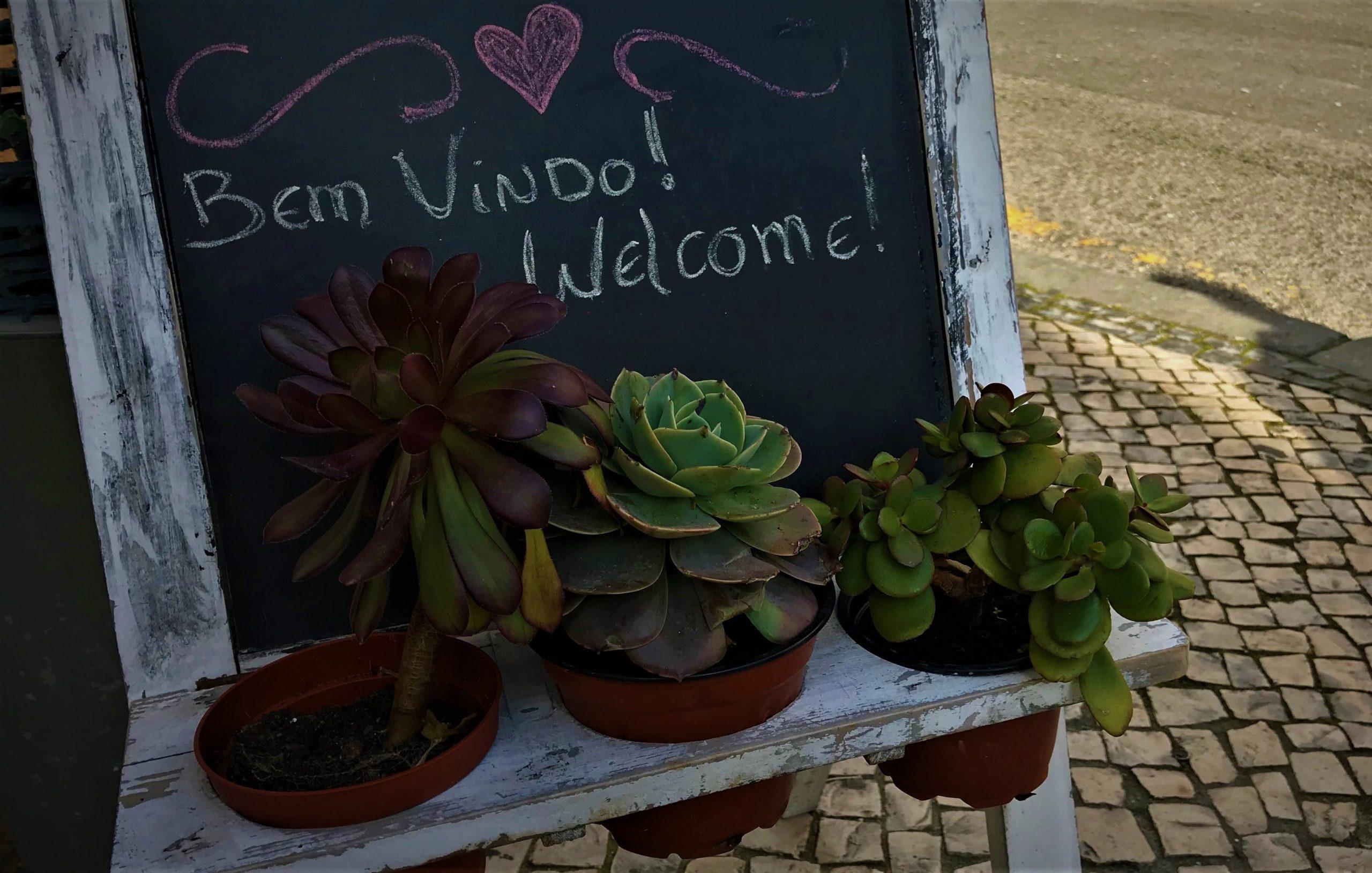 aveiro portugal blog