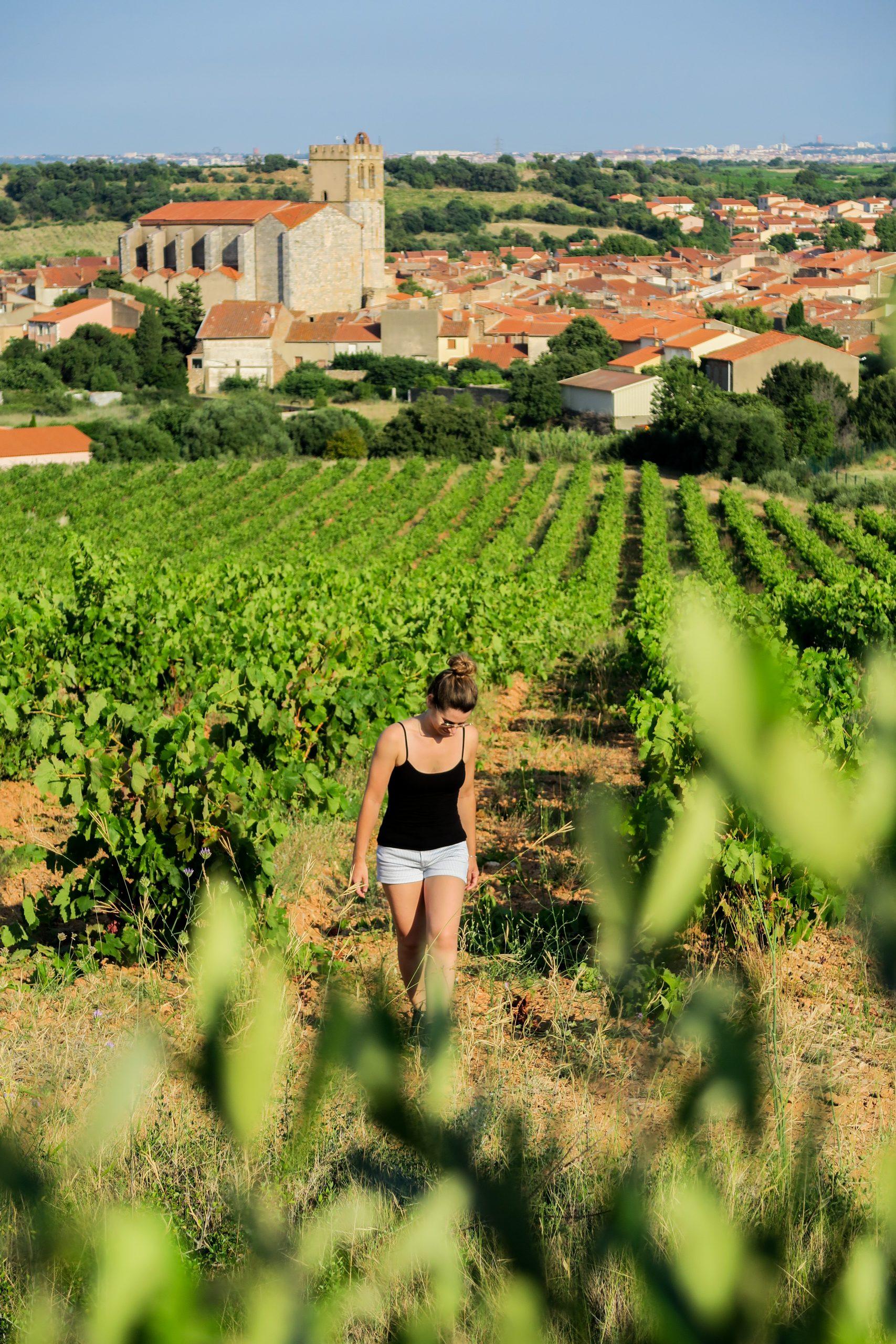 baixas village occitanie
