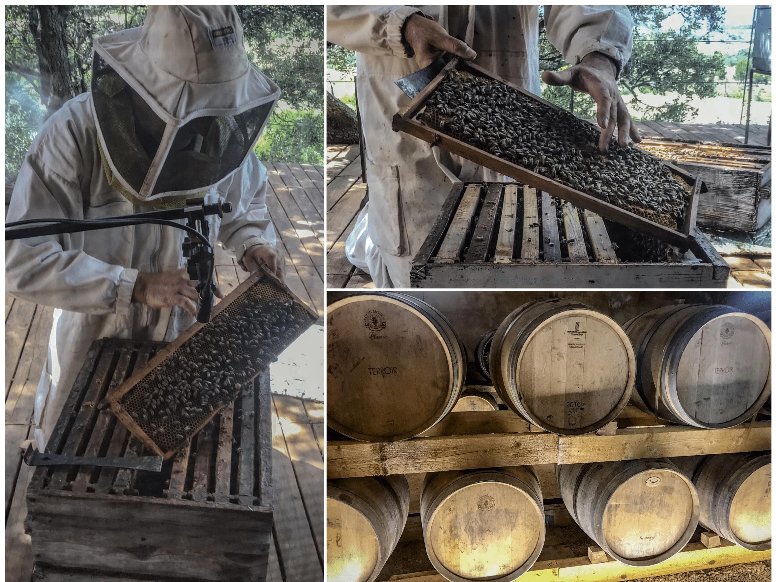miellerie des clauses laurent apiculteur