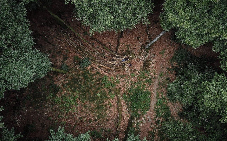 Un séjour nature dans le Parc Naturel régional du Haut-Languedoc