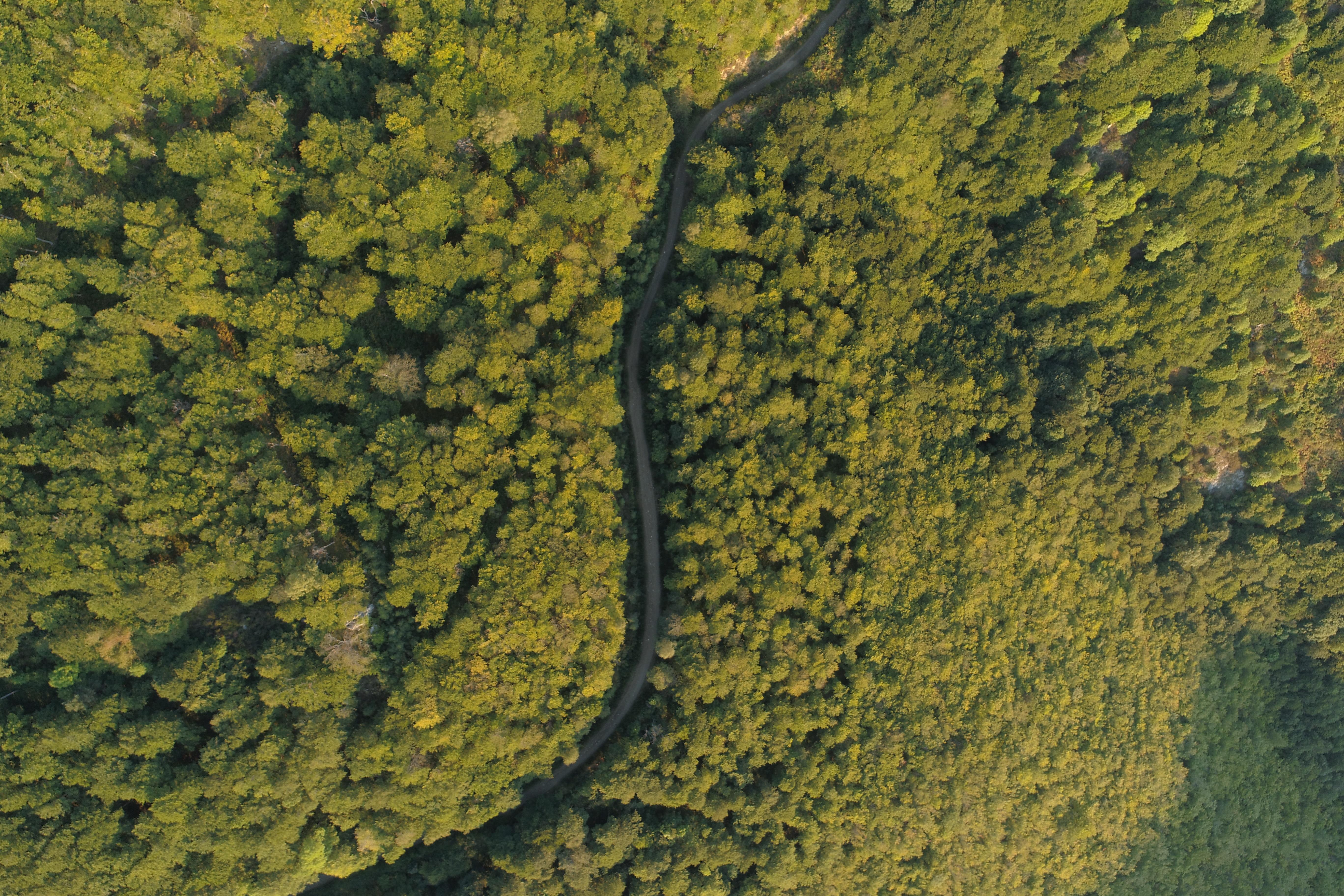 route du haut vallespir en pyrénées-orientales