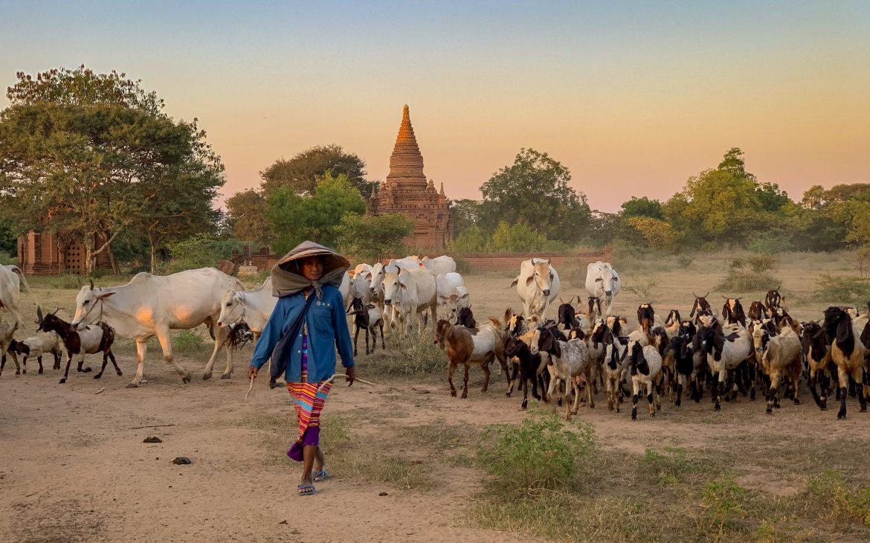 Itinéraire, budget & conseils pour 15 jours au Myanmar
