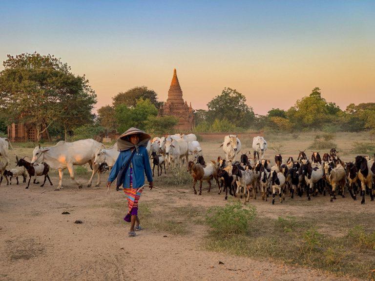 visiter le myanmar