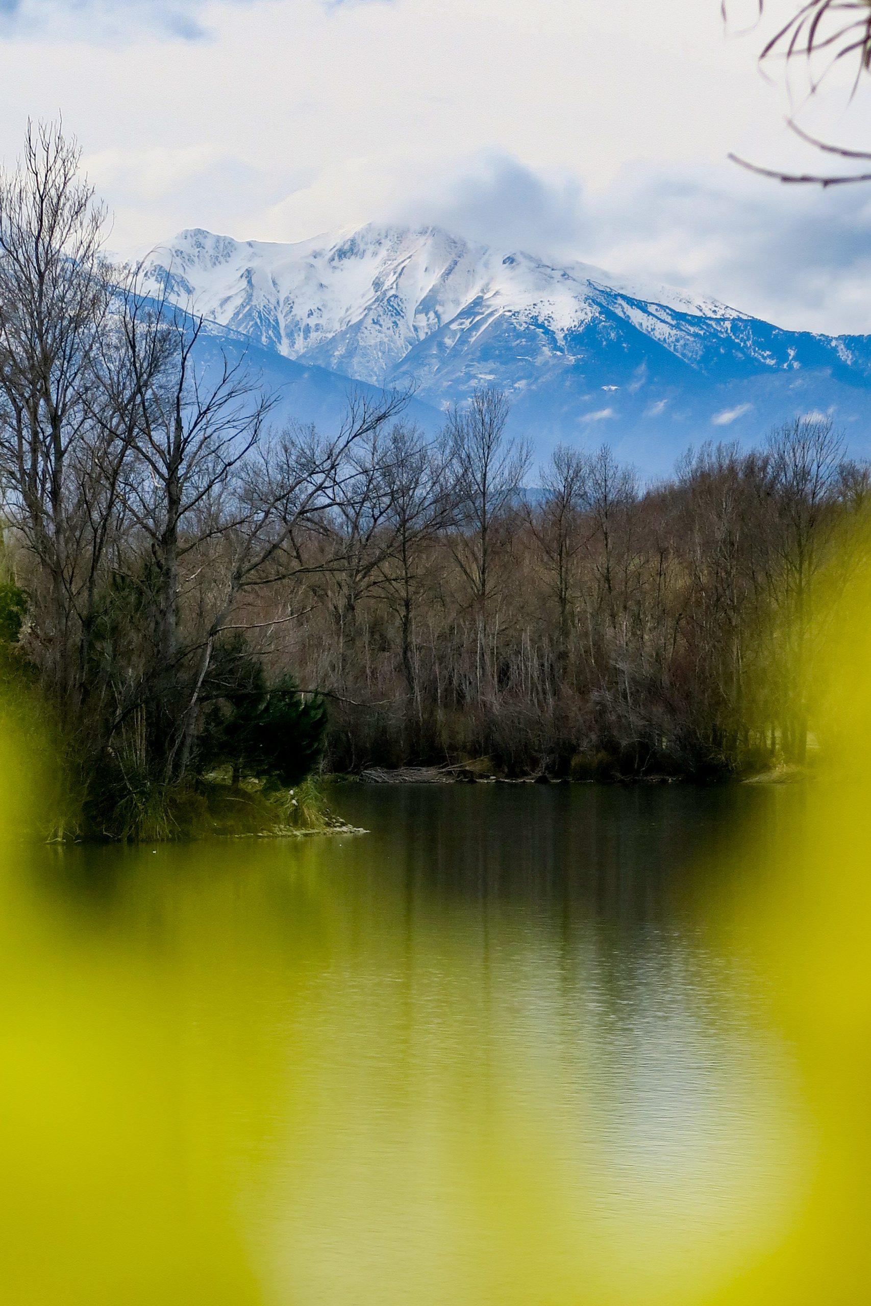 vue sur le canigo depuis l'étang du bouchot