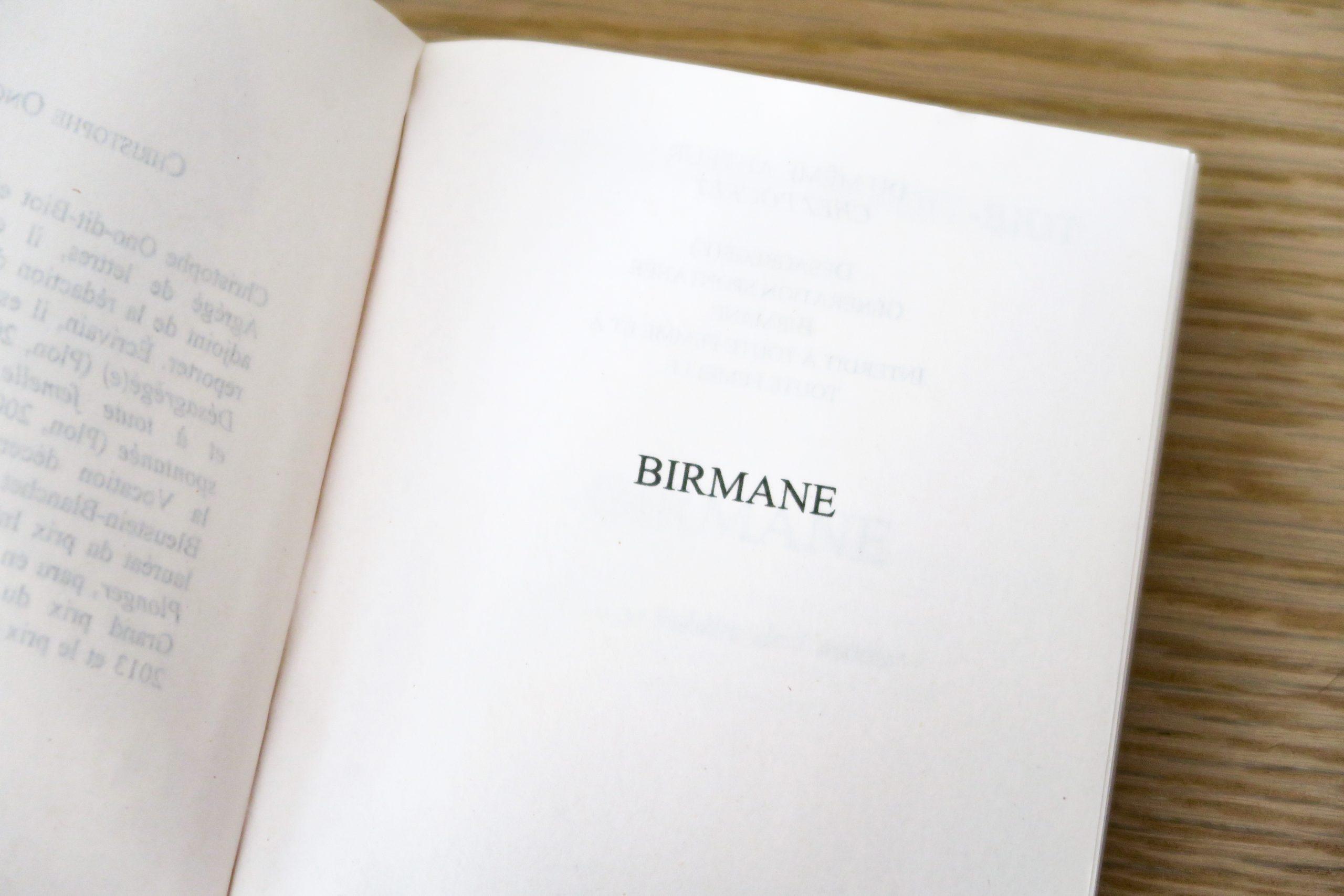 birmane idées de livres pour voyager