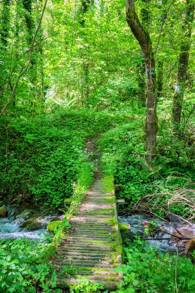 sentier de randonnée tour del mir prats de mollo