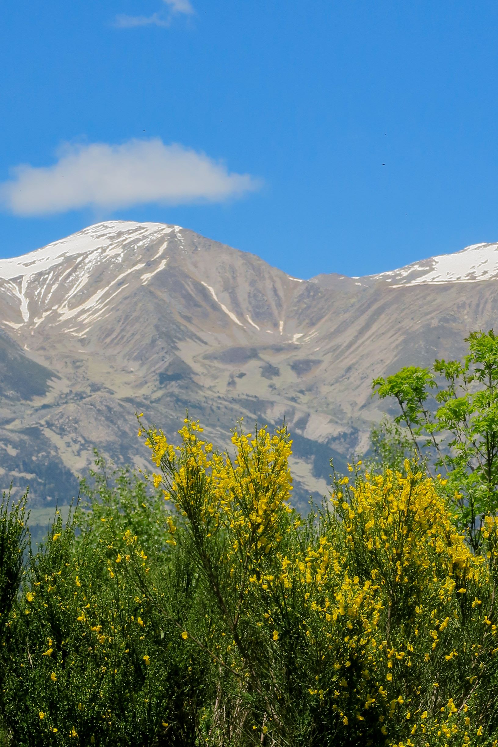 vue sur le massif du canigo tour del mir