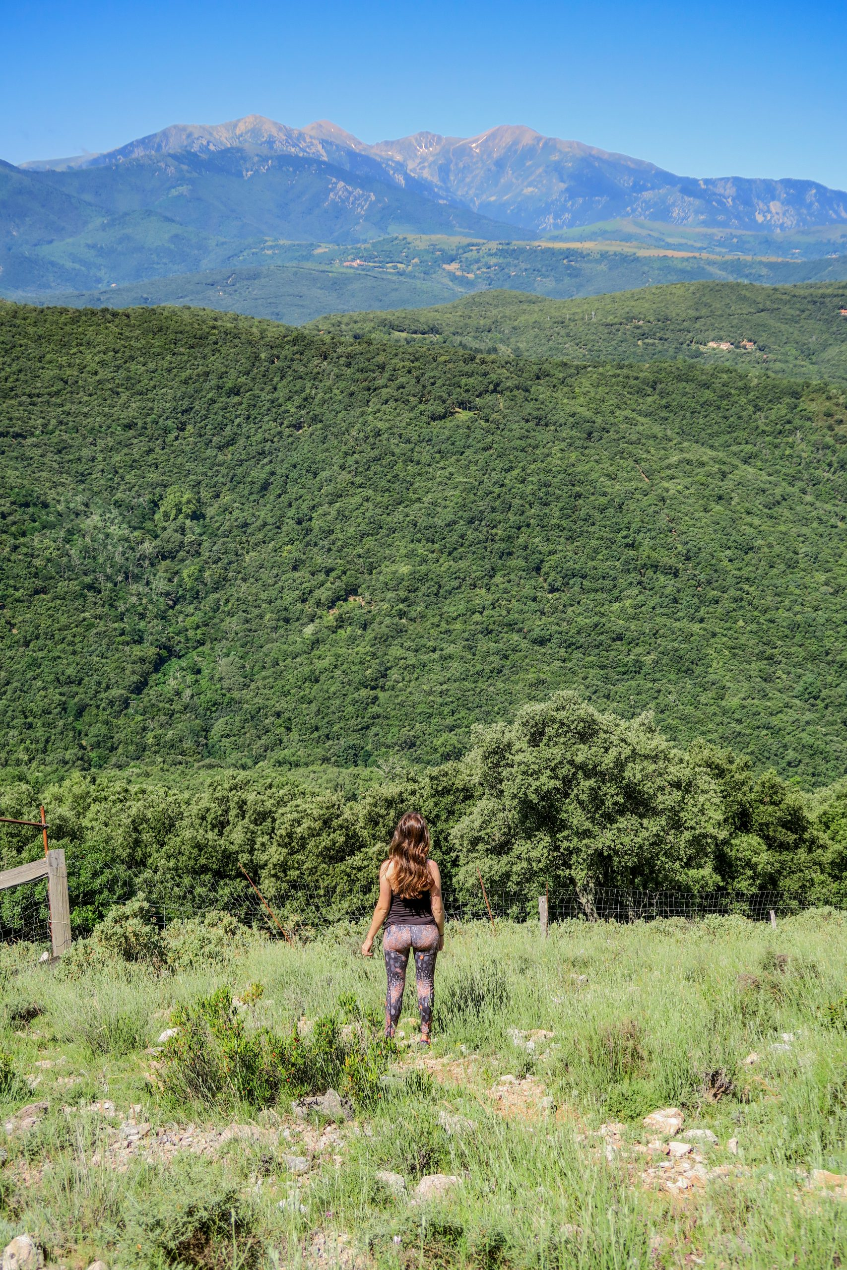 pic de la calcine randonnée oms aspres