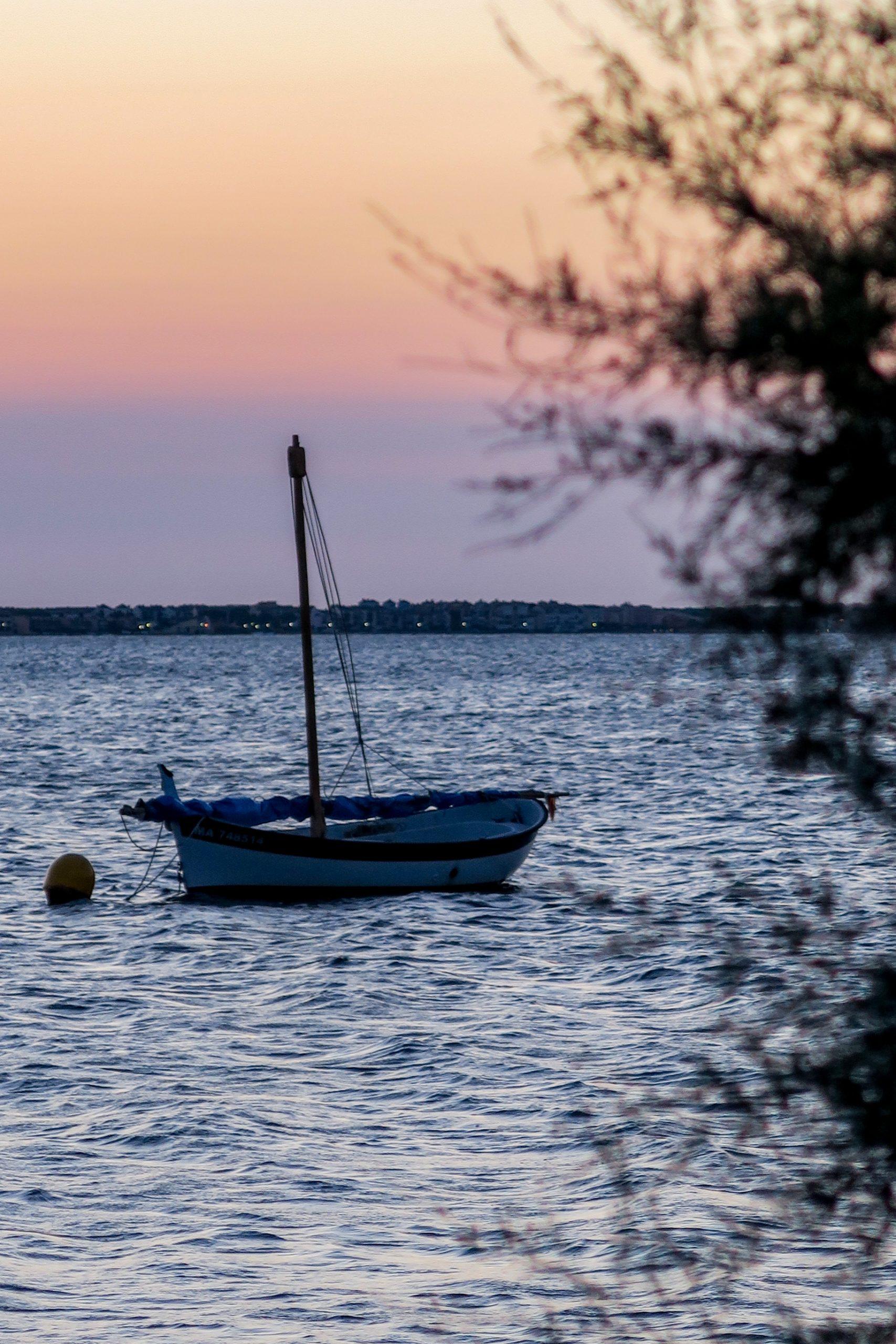 barques de la bonanca pyrénées orientales