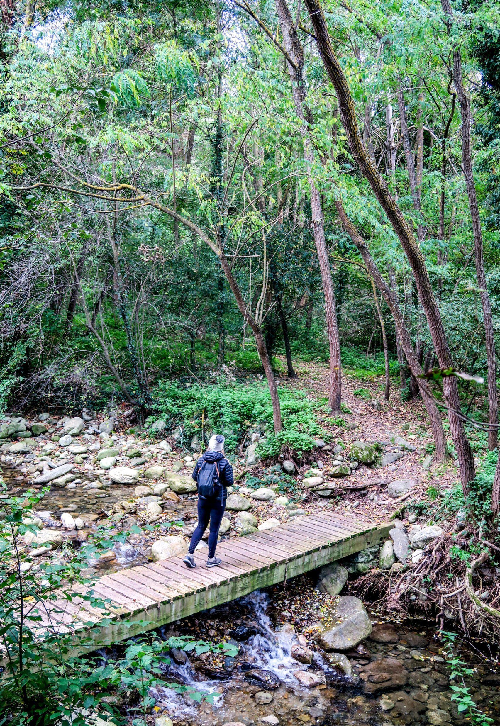 sentier randonnée conflent les ambullas