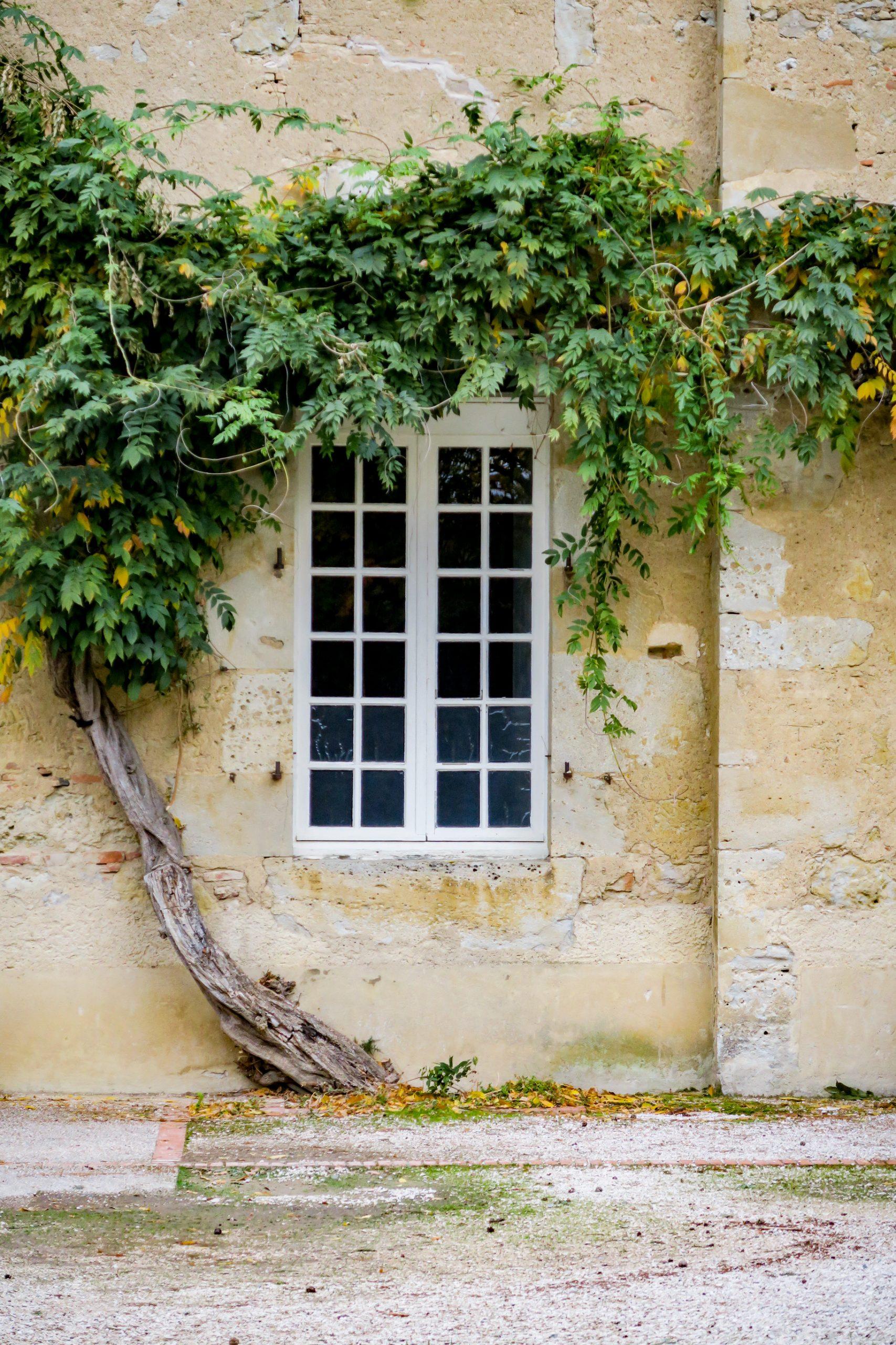 visiter le Gers et l'abbaye de Boulaur sud du Gers