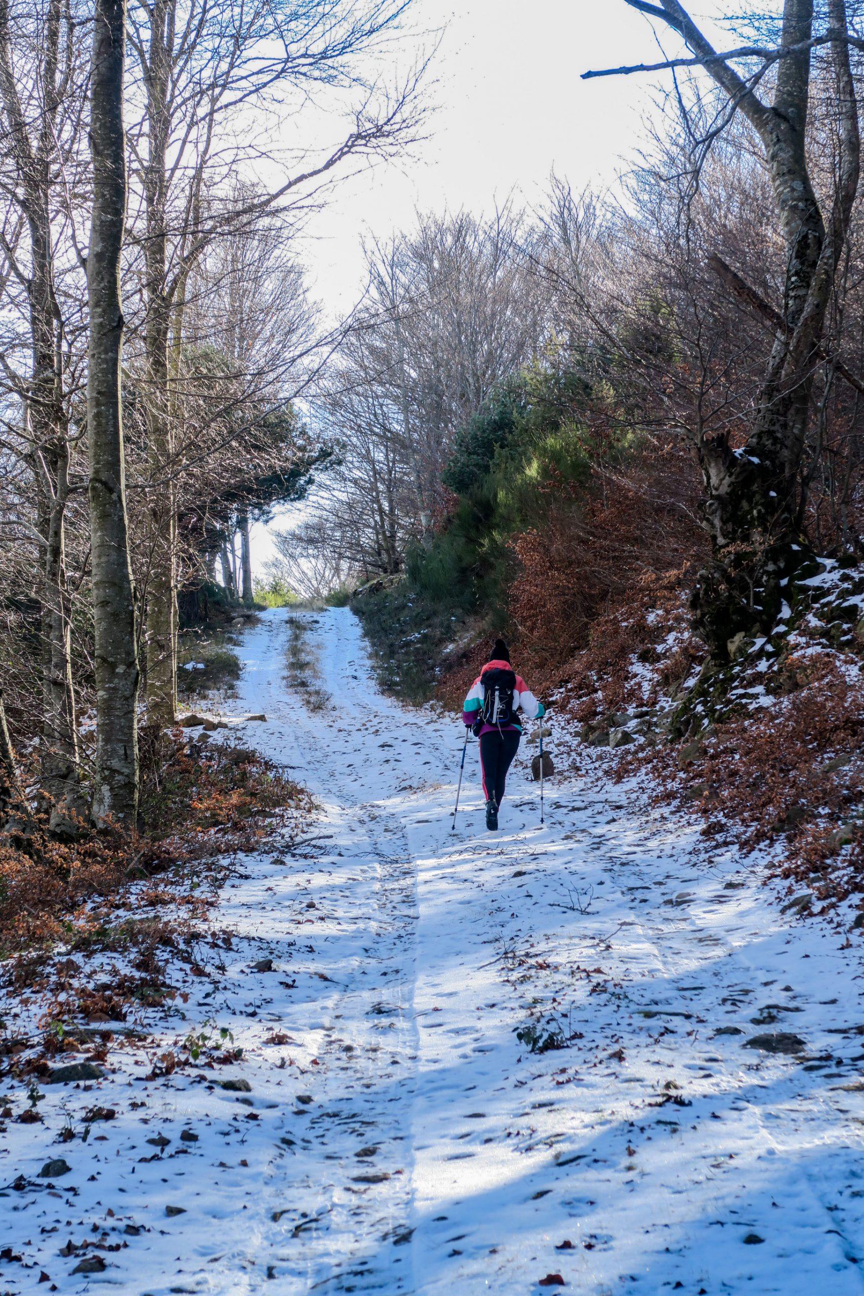 sentier du pic des salines hiver