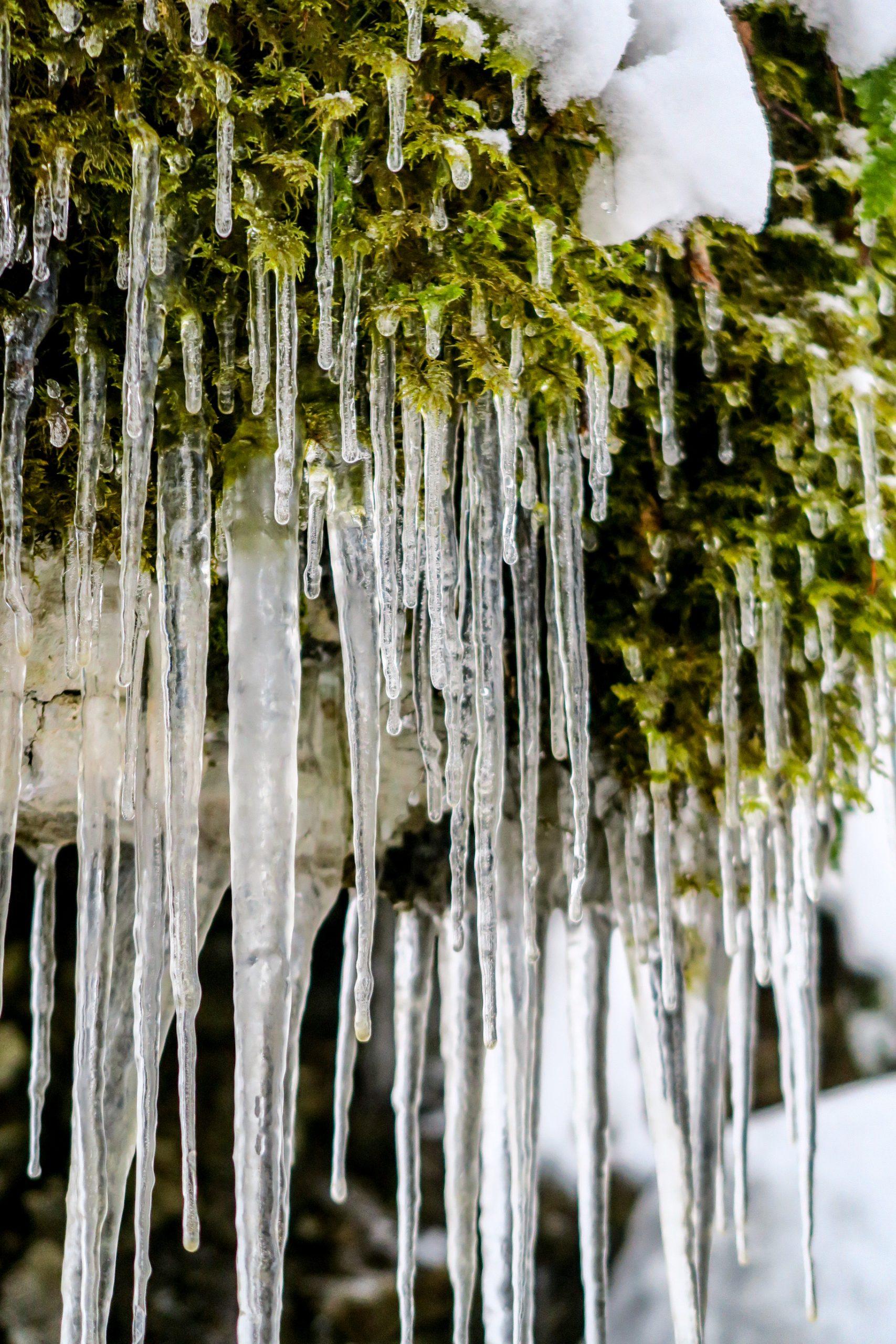 décors glacés fort de tamié