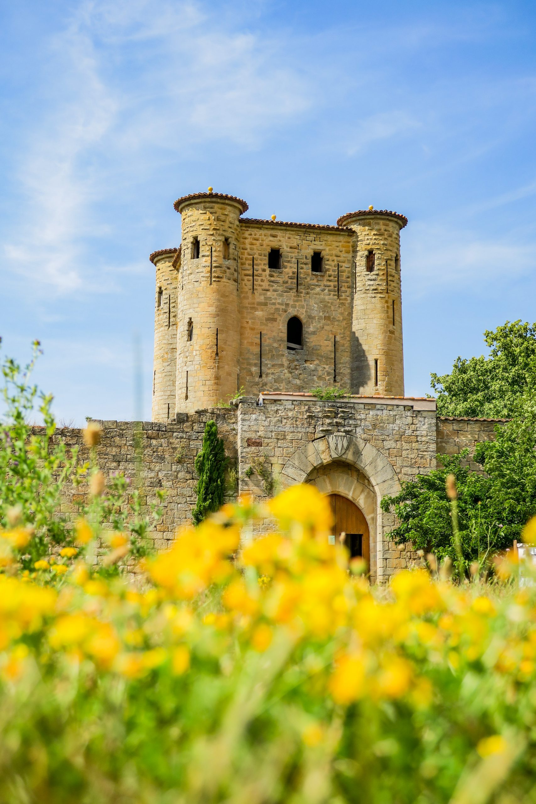 chateau arques pays cathare